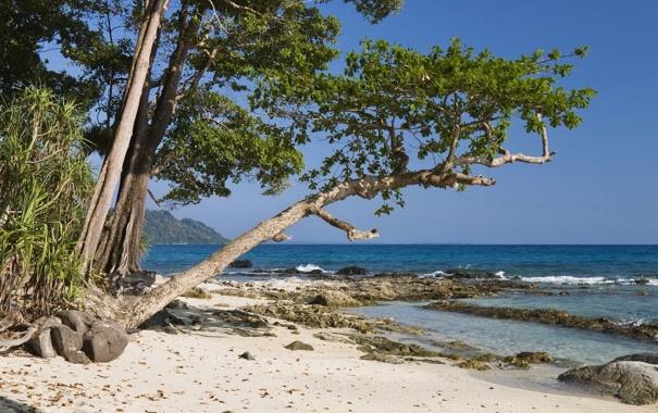 Фото обои песок, деревья, горы, океан, побережье, горизонт, рифы