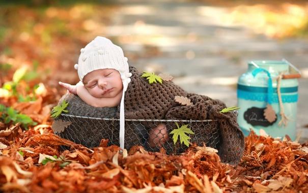 Фото обои настроение, корзина, младенец
