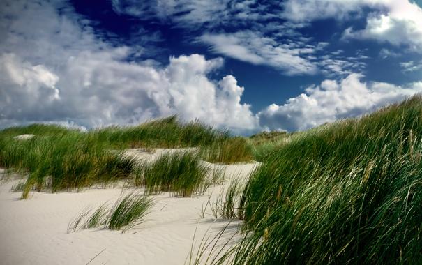 Фото обои песок, трава, облака, дюна