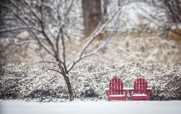 Фото обои зима, город, парк