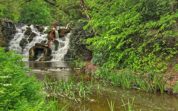 Фото обои водопад, лес, река, деревья, камни