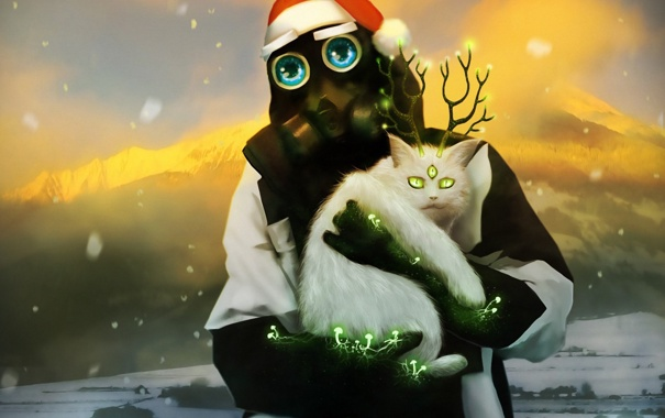 Фото обои кошка, кот, снег, шапка, радиация, противогаз, рога