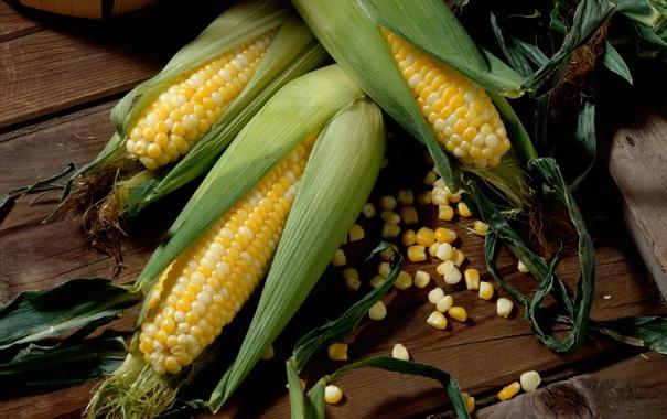 Фото обои зелень, кукуруза, пол, деревянный