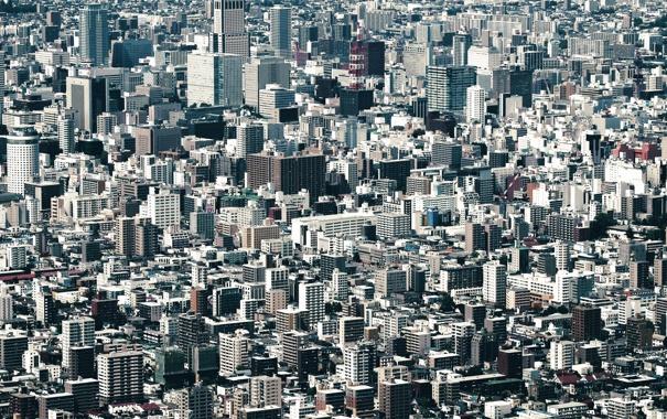 Фото обои город, здания, Япония, мегаполис