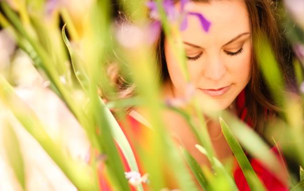 Фото обои поле, девушка, цветы