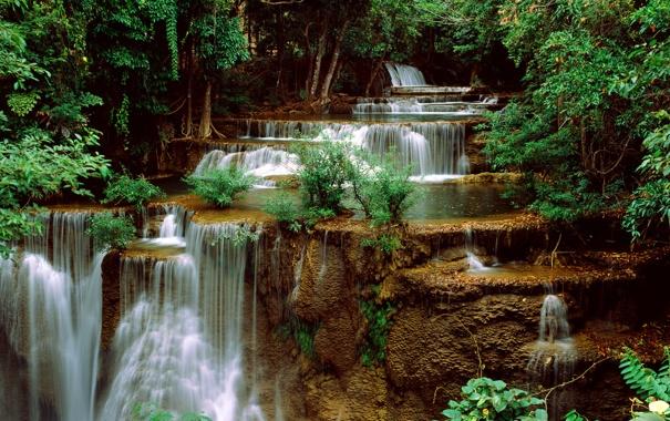 Фото обои деревья, водопад, каскады