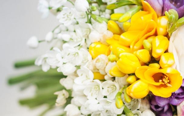 Фото обои листья, цветы, букет, бутоны, flowers, leaves, bouquet