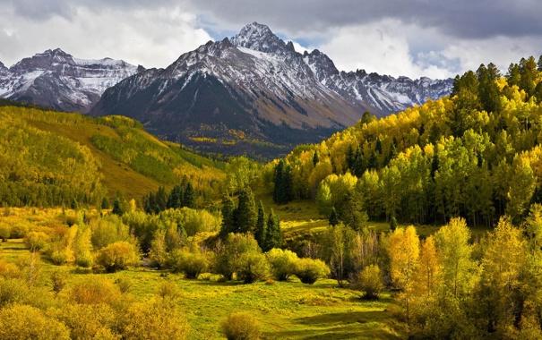 Фото обои деревья, лес, горы, осень