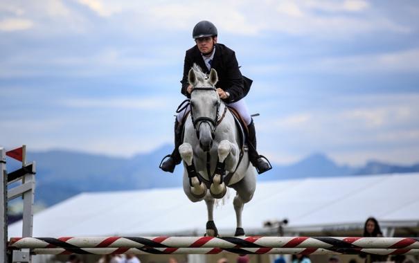 Фото обои конь, прыжок, спорт