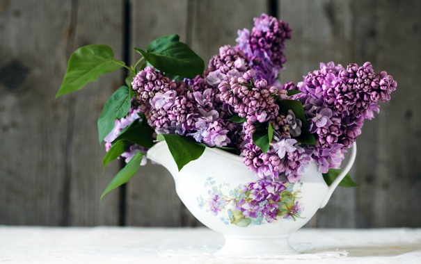 Фото Букеты Тюльпаны Банка Ирисы цветок Сирень | 380x605