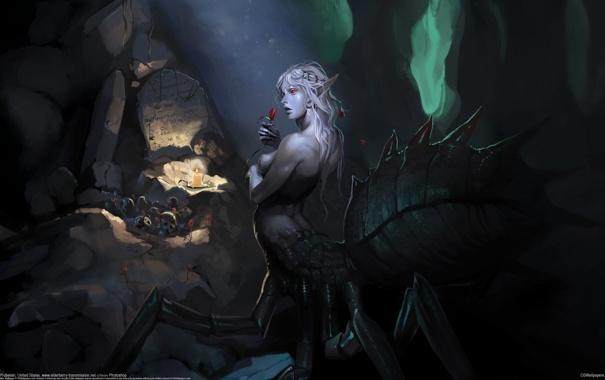 Фото обои девушка, черепа, пещера, паучиха, Jake Probelski