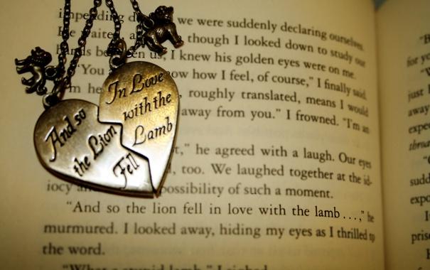 Фото обои обои, медальон, книга, love, разное, the, with