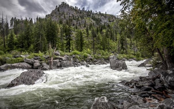 Фото обои деревья, пейзаж, горы, река