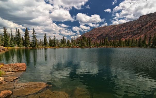 Фото обои лес, облака, озеро, гора