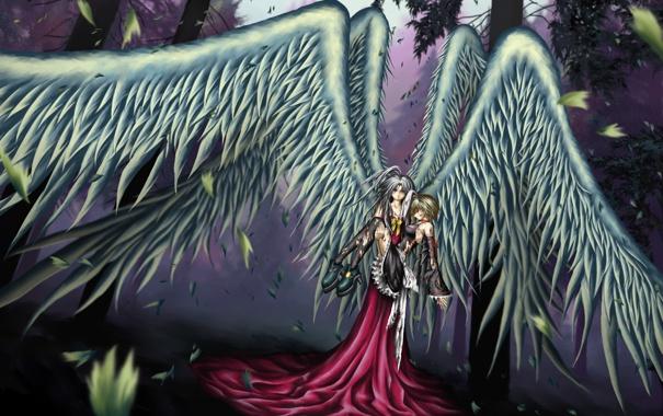 Фото обои деревья, природа, девушки, кровь, крылья, аниме, слезы