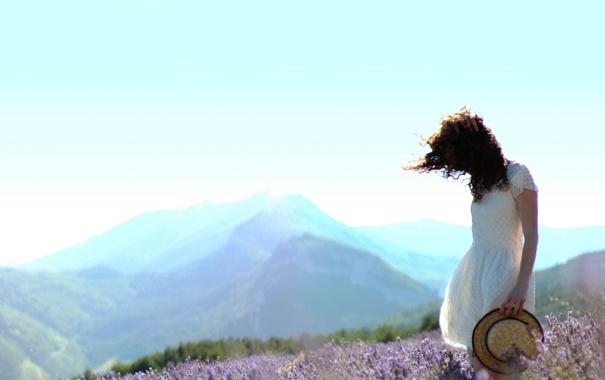 Фото обои лаванда, девушка, трава, поле, лето