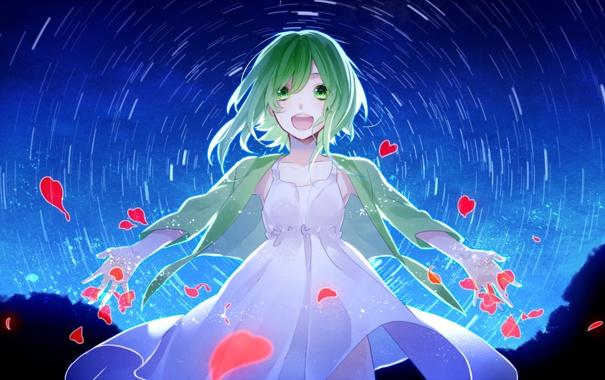 Фото обои небо, девушка, звезды, радость, ночь, аниме, лепестки
