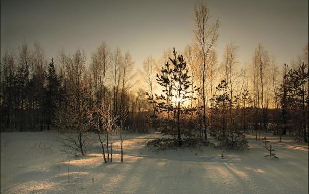 Фото обои зима, снег, пейзаж, закат, вечер, сумерки