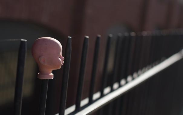 Фото обои кукла, забор, голова