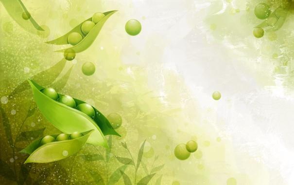 Фото обои свет, зеленый, горошек, листики, стрючек