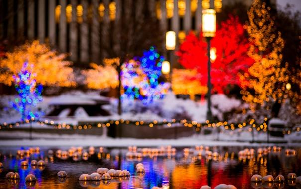 Фото обои зима, снег, деревья, город, огни, пруд, здания