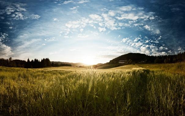 Фото обои поле, свет, пейзаж