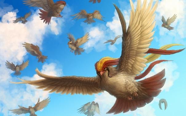 Фото обои птицы, крылья, арт, в небе, хохолок