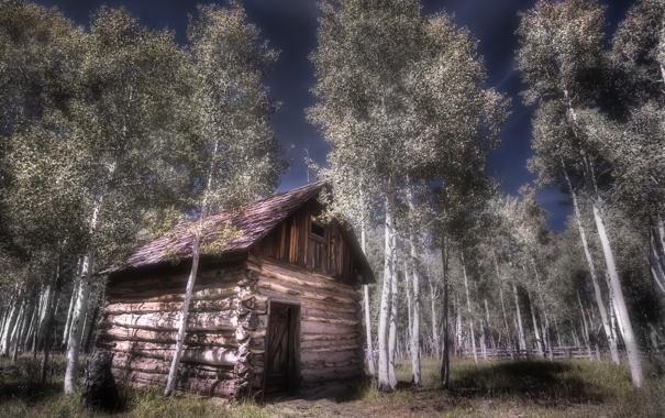 Фото обои пейзаж, дом, деревья