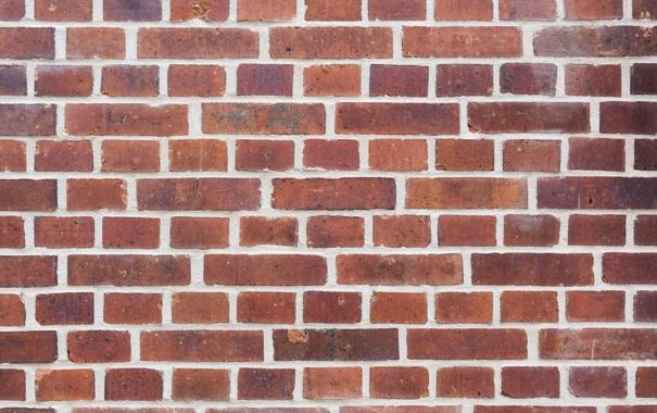 Фото обои wall, bricks, pattern, cement