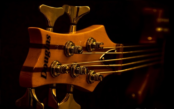 Фото обои гриф, обои, гитара