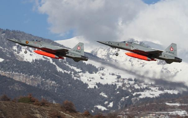 Фото обои истребители, пара, многоцелевые, Northrop F-5S