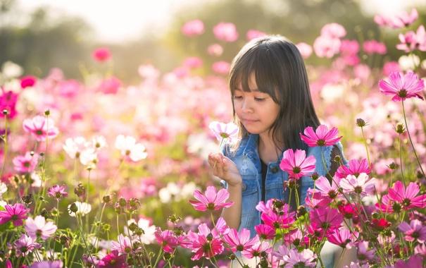 Фото обои лето, цветы, настроение, девочка