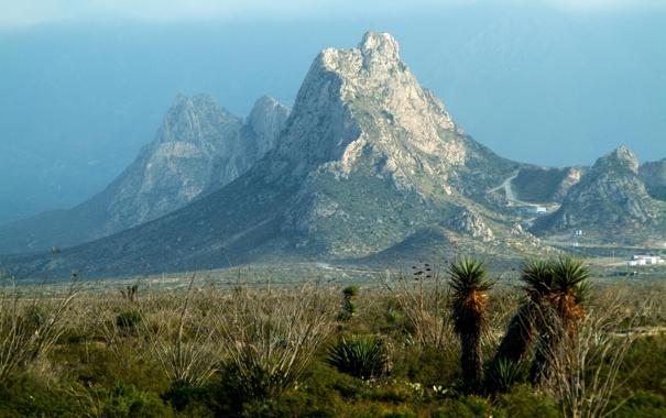 Фото обои горы, Мексика, кактусы, Mexico, поселок, Mina, Nuevo Leon