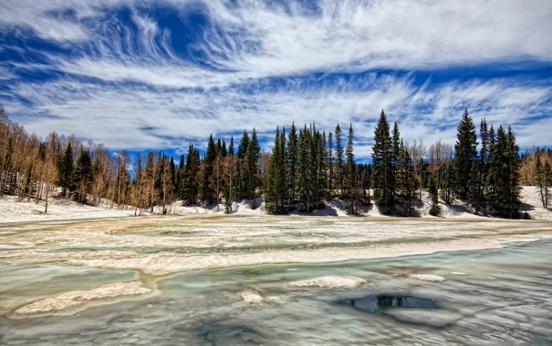 Фото обои зима, лес, облака, весна, across ice of dog lake