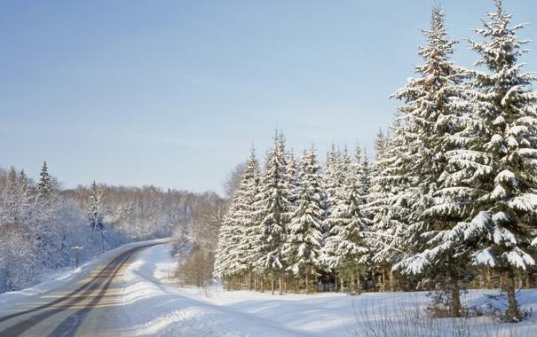 Фото обои зима, дорога, лес, деревья, природа, фото, гора