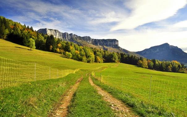 Фото обои дорога, зелень, деревья, горы, холмы, забор, склон