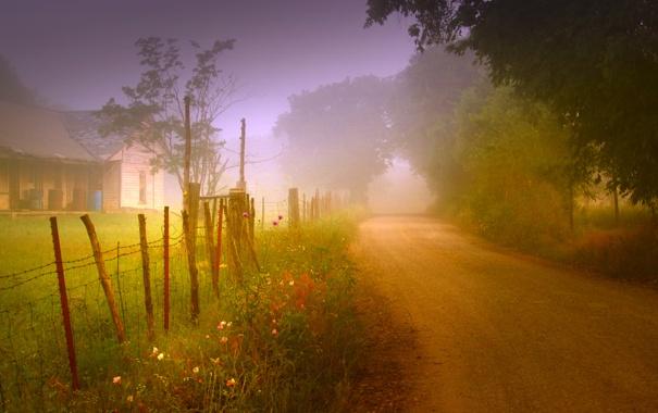 Фото обои дорога, природа, туман, дом, забор, утро
