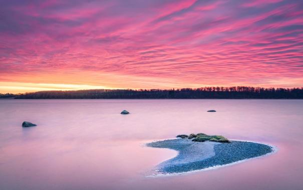 Фото обои лес, пейзаж, закат, озеро