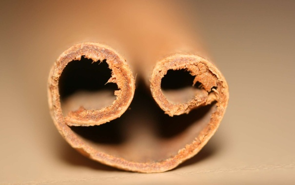 Фото обои макро, корица, коричневый, ГРИП