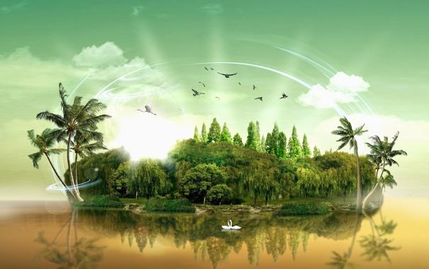 Фото обои остров, лебеди, island paradise