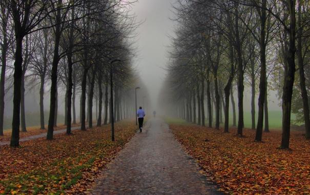 Фото обои осень, туман, парк, люди, утро, фонари, пробежка