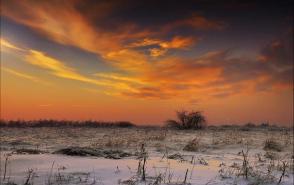 Фото обои зима, снег, закат, вечер