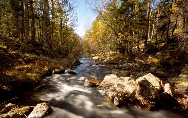 Фото обои осень, пейзаж, природа, река