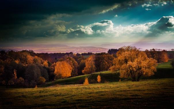 Фото обои город, осень, небо