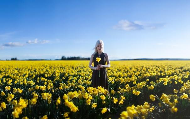 Фото обои поле, лето, девушка, цветы, настроение