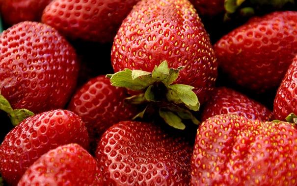 Фото обои урожай, клубника, ягода, витамины, огород