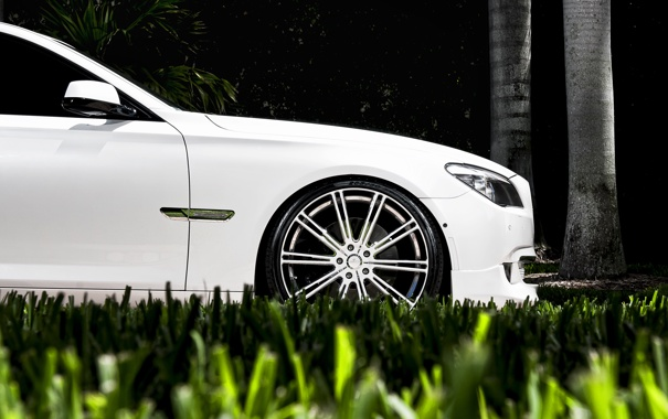 Фото обои белый, трава, газон, бмв, BMW, диски, семёрка