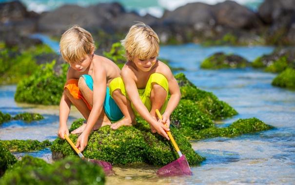 Фото обои море, дети, камни, сачки