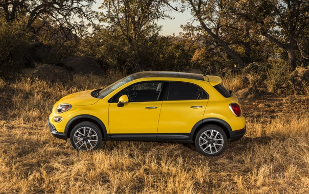 Фото обои желтый, фото, автомобиль, сбоку, металлик, Fiat, 2014