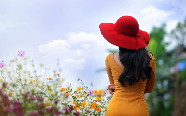 Фото обои девушка, цветы, шляпка